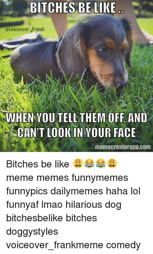 Bitches Be Like Meme: BITCHES BE LIKE  @voiceover frank  WHEN YOU TELL THEM OFF AND  CAN'T LOOK IN YOUR FACE  memecreatorapp.com Bitches be like 😩😂😂😩 meme memes funnymemes funnypics dailymemes haha lol funnyaf lmao hilarious dog bitchesbelike bitches doggystyles voiceover_frankmeme comedy