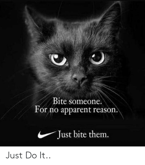 Just Do It, Reason, and Them: Bite someone.  For no apparent reason.  Just bite them. Just Do It..
