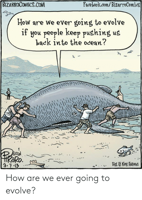 Facebook: BIZARROCOMICS.COM  Facebook.com/BizarroComics  How are we ever going to evolve  if you people keep pushing us  back into the ocean?  OPAN  HRƏRO.  3.7.13  Dist Y King Features How are we ever going to evolve?