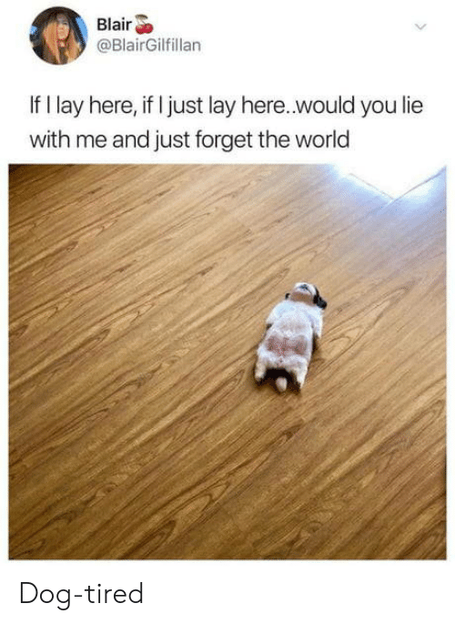 you lie: Blair  @BlairGilfillan  If I lay here, if I just lay here..would you lie  with me and just forget the world Dog-tired