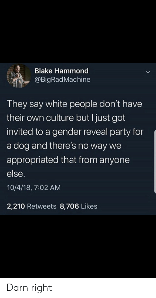 Party, White People, and White: Blake Hammond  @BigRadMachine  They say white people don't have  their own culture but I just got  invited to a gender reveal party for  a dog and there's no way we  appropriated that from anyone  else.  10/4/18, 7:02 AM  2,210 Retweets 8,706 Likes Darn right