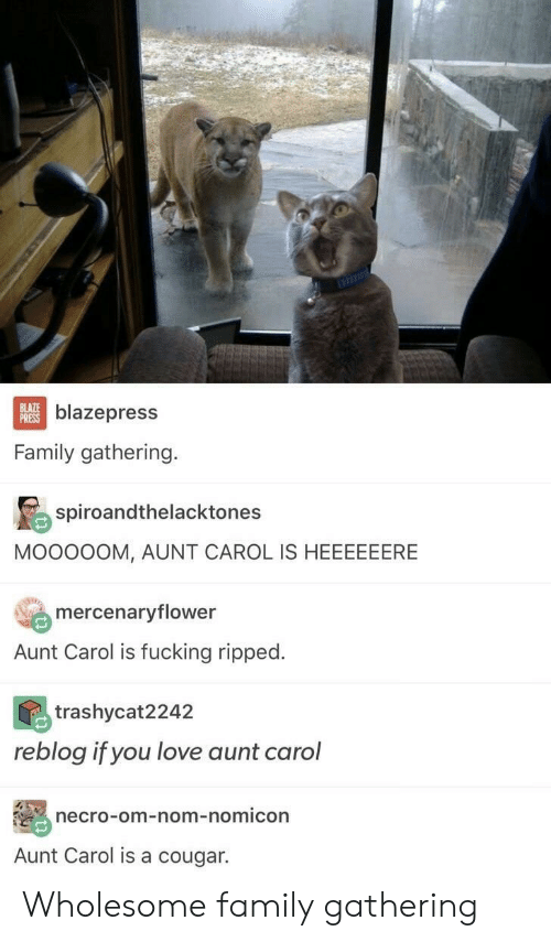 carol: BLAZE  PRESS  blazepress  Family gathering.  spiroandthelacktones  MOOOOOM, AUNT CAROL IS HEEEEEERE  mercenaryflower  Aunt Carol is fucking ripped.  trashycat2242  reblog if you love aunt carol  necro-om-nom-nomicon  Aunt Carol is a cougar. Wholesome family gathering