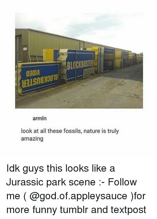 Look At All These: BLOCKBUSTER  o30l  armln  look at all these fossils, nature is truly  amazing Idk guys this looks like a Jurassic park scene :- Follow me ( @god.of.appleysauce )for more funny tumblr and textpost