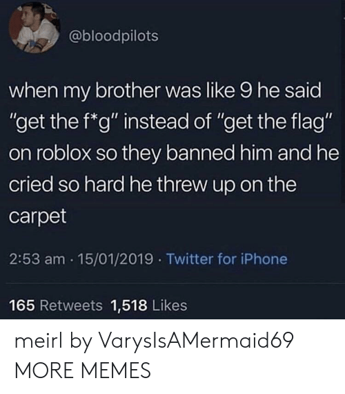 """roblox: @bloodpilots  when my brother was like 9 he said  """"get the f*g"""" instead of """"get the flag""""  on roblox so they banned him and he  cried so hard he threw up on the  carpet  2:53 am 15/01/2019 Twitter for iPhone  165 Retweets 1,518 Likes meirl by VarysIsAMermaid69 MORE MEMES"""