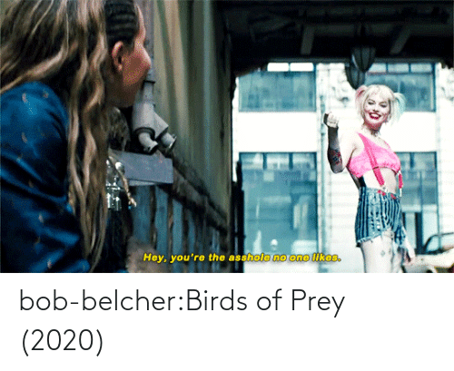 Https: bob-belcher:Birds of Prey (2020)