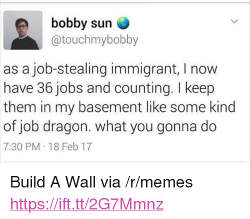 "Memes, Jobs, and Dragon: bobby sun  @touchmybobby  as a job-stealing immigrant, I now  have 36 jobs and counting. I keep  them in my basement like some kind  of job dragon. what you gonna do  7:30 PM 18 Feb 17 <p>Build A Wall via /r/memes <a href=""https://ift.tt/2G7Mmnz"">https://ift.tt/2G7Mmnz</a></p>"