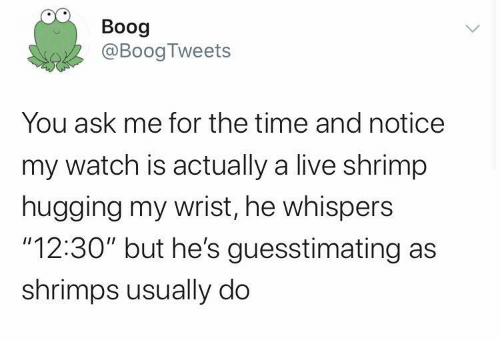 "hugging: Boog  @BoogTweets  You ask me for the time and notice  my watch is actually a live shrimp  hugging my wrist, he whispers  ""12:30"" but he's guesstimating as  shrimps usually do"