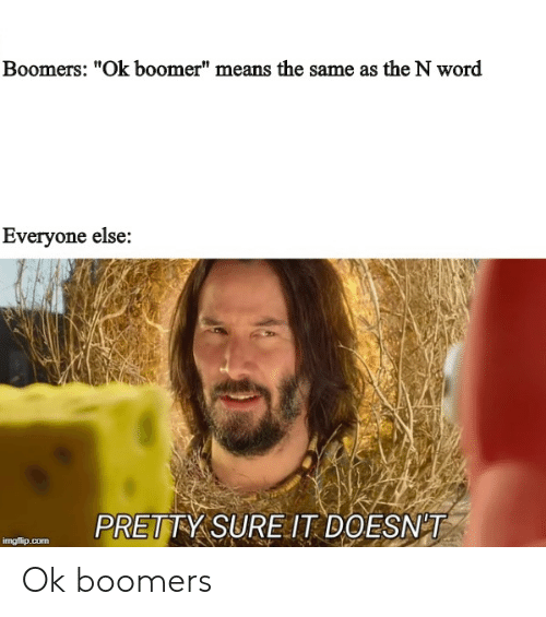 "Word, Com, and Means: Boomers: ""Ok boomer"" means the same as the N word  Everyone else:  PRETTY SUREIT DOESNT  imgflip.com Ok boomers"