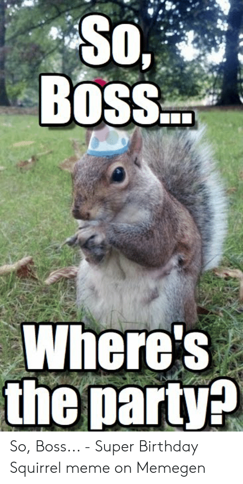 Boss Where S The Party So Boss Super Birthday Squirrel
