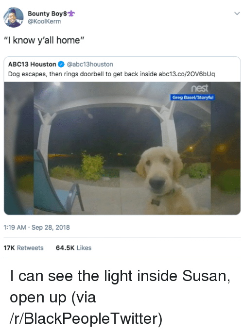 """Blackpeopletwitter, Abc13, and Home: Bounty Boy$  @KoolKerm  """"I know y'all home""""  ABC13 Houston@abc13houston  Dog escapes, then rings doorbell to get back inside abc13.co/20V6bUq  nest  :19 AM Sep 28, 2018  17K Retweets  64.5K Likes I can see the light inside Susan, open up (via /r/BlackPeopleTwitter)"""