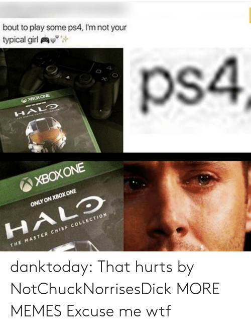 "Dank, Halo, and Memes: bout to play some ps4, I'm not your  typical girl y"",  ps4  XBOXONE  ONLY ON XBOX ONE  HALO  CHI  THE MASTER CHIEF COLLECTION danktoday:  That hurts by NotChuckNorrisesDick MORE MEMES  Excuse me wtf"