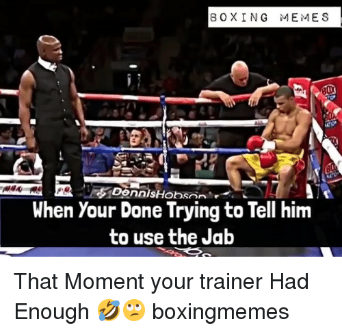 jab: BOXING MEMES  When Your Done Trying to Tell hinm  to use the Jab That Moment your trainer Had Enough 🤣🙄 boxingmemes