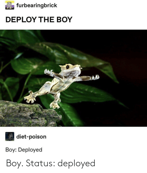 Status: Boy. Status: deployed
