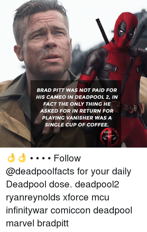 Brad Pitt: BRAD PITT WAS NOT PAID FOR  HIS CAMEO IN DEADPOOL 2, IN  FACT THE ONLY THING HE  ASKED FOR IN RETURN FOR  PLAYING VANISHER WAS A  SINGLE CUP OF COFFEE.  DEADPOBL  FACTS 👌👌 • • • • Follow @deadpoolfacts for your daily Deadpool dose. deadpool2 ryanreynolds xforce mcu infinitywar comiccon deadpool marvel bradpitt