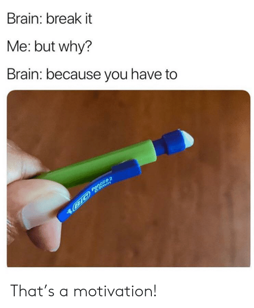 Pencil: Brain: break it  Me: but why?  Brain: because you have to  Pencil 2  B1C 6.9mm That's a motivation!