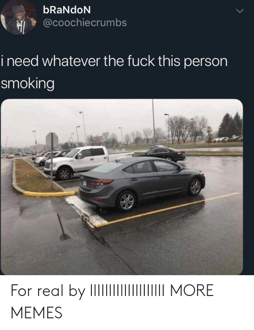 fuck this: bRaNdoN  @coochiecrumbs  i need whatever the fuck this person  smoking For real by llIIllIIllIIllIIlllI MORE MEMES