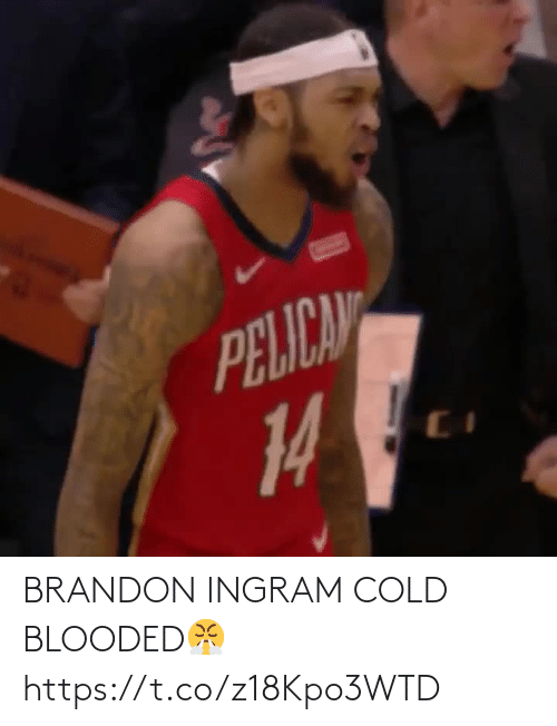 Cold: BRANDON INGRAM COLD BLOODED😤 https://t.co/z18Kpo3WTD
