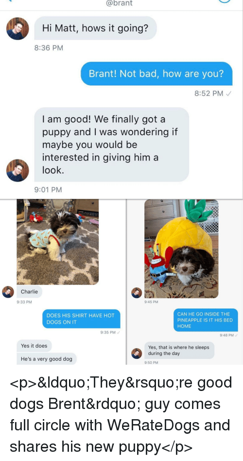 """Bad, Charlie, and Dogs: @brant  Hi Matt, hows it going?  8:36 PM  Brant! Not bad, how are you?  8:52 PM  I am good! We finally got a  puppy and I was wondering if  maybe you would be  interested in giving him a  look  9:01 PM  Charlie  9:33 PM  9:45 PM  DOES HIS SHIRT HAVE HOT  DOGS ON IT  CAN HE GO INSIDE THE  PINEAPPLE IS IT HIS BED  HOME  9:35 PM  9:48 PM  Yes it does  Yes, that is where he sleeps  He's a very good dog  9:50 PM <p>""""They're good dogs Brent"""" guy comes full circle with WeRateDogs and shares his new puppy</p>"""