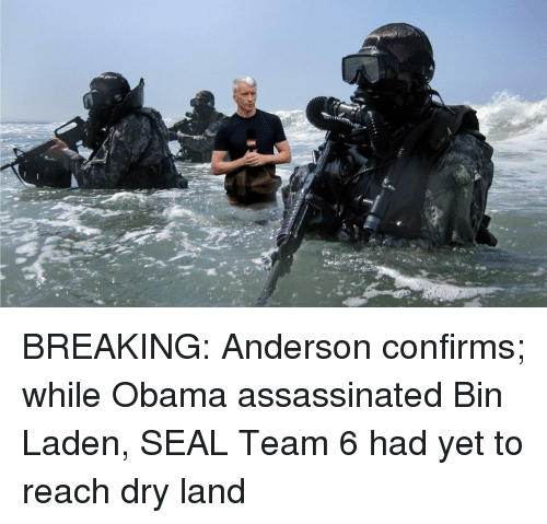 Obama, Seal, and Bin Laden