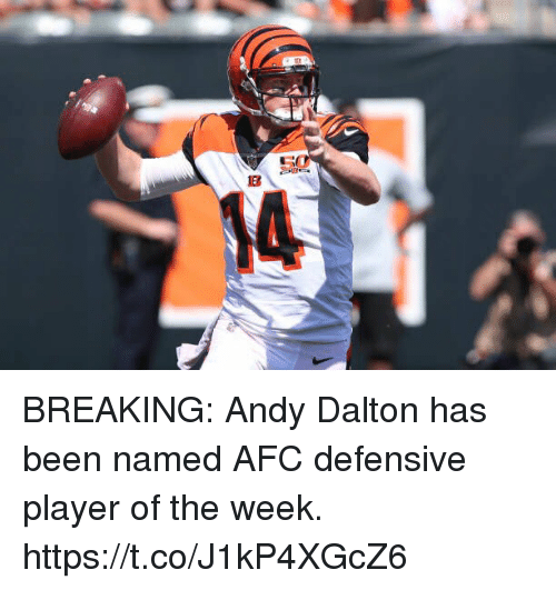 Andy Dalton: BREAKING: Andy Dalton has been named AFC defensive player of the week. https://t.co/J1kP4XGcZ6