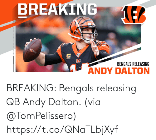 Andy Dalton: BREAKING: Bengals releasing QB Andy Dalton. (via @TomPelissero) https://t.co/QNaTLbjXyf