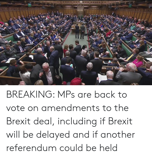 Dank, Back, and Brexit: BREAKING: MPs are back to vote on amendments to the Brexit deal, including if Brexit will be delayed and if another referendum could be held