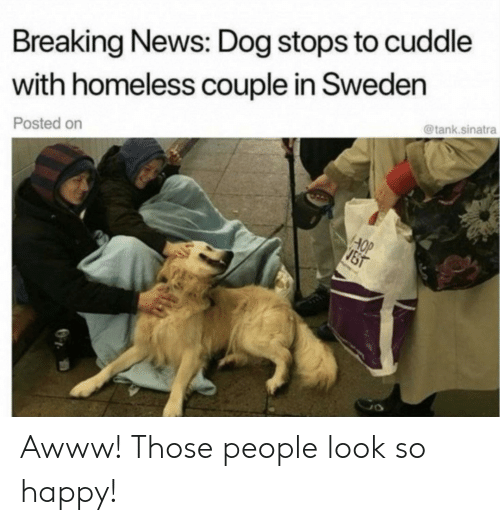 Homeless, News, and Breaking News: Breaking News: Dog stops to cuddle  with homeless couple in Sweden  @tank.sinatra  Posted on  AOP  JST Awww! Those people look so happy!