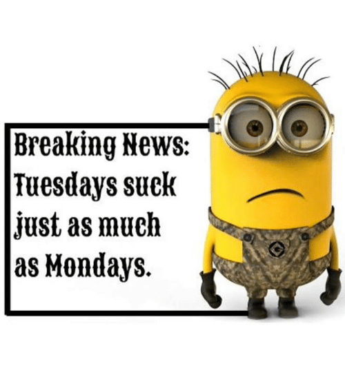 Suckes: Breaking News:  Tuesdays suck  just as much  as Mondays.