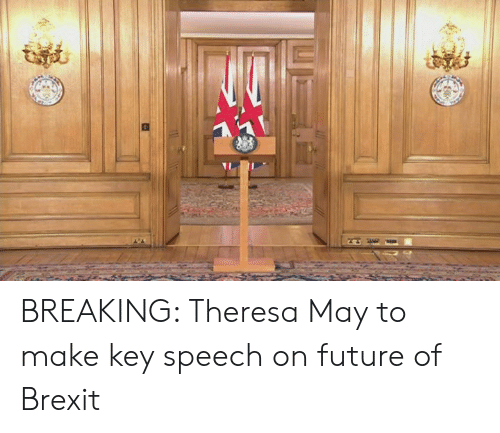 Dank, Future, and Brexit: BREAKING: Theresa May to make key speech on future of Brexit