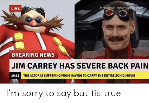 Jim Carrey, News, and Sorry: breakyourownnews.com  LIVE  BREAKING NEWS  JIM CARREY HAS SEVERE BACK PAIN  19:12  THE ACTOR IS SUFFERING FROM HAVING TO CARRY THE ENTIRE SONIC MOVIE I'm sorry to say but tis true