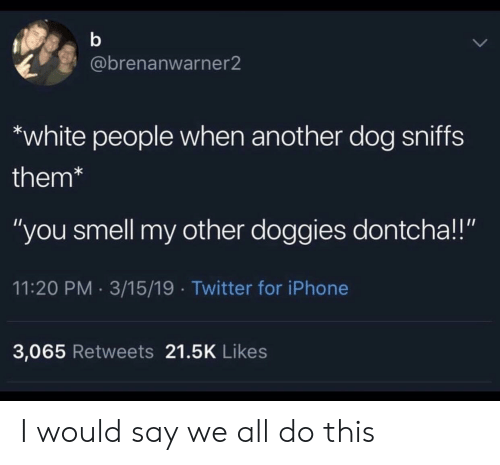 """i would say: @brenanwarner2  white people when another dog sniffs  them*  """"you smell my other doggies dontcha!!""""  11:20 PM 3/15/19 Twitter for iPhone  3,065 Retweets 21.5K Likes I would say we all do this"""