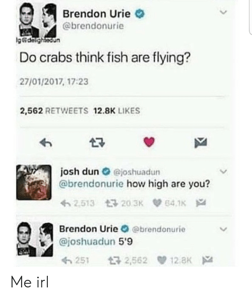 How High, Fish, and Irl: Brendon Urie  @brendonurie  g&dalightedun  Do crabs think fish are flying?  27/01/2017, 17:23  2,562 RETWEETS 12.8K LIKES  josh dun@joshuadun  @brendonurie how high are you?  2.513 203K  64.1K  Brendon Urie @brendonurie  @joshuadun 5'9  12 aK  t32,562  251 Me irl