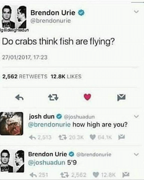 how high: Brendon Urie  @brendonurie  g@dalightodun  Do crabs think fish are flying?  27/01/2017, 17:23  2,562 RETWEETS 12.8K LIKES  josh dun @joshuadun  @brendonurie how high are you?  2.513 20.3K  641K  Brendon Urie @brendonurie  @joshuadun 5'9  2,562 12.8K  251