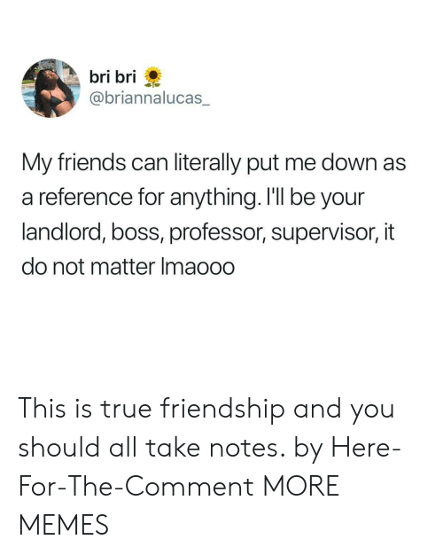 true friendship: bri bri  @briannalucas  My friends can literally put me down as  a reference for anything. I'll be your  landlord, boss, professor, supervisor, it  do not matter Imaooo This is true friendship and you should all take notes. by Here-For-The-Comment MORE MEMES
