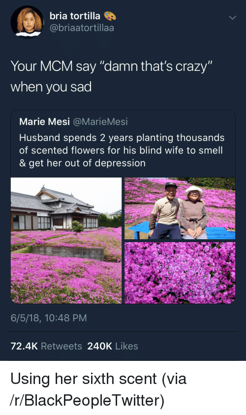 "Blackpeopletwitter, Crazy, and Smell: bria tortilla  @@briaatortillaa  Your MCM say ""damn that's crazy""  when you sad  Marie Mesi @MarieMesi  Husband spends 2 years planting thousands  of scented flowers for his blind wife to smell  & get her out of depression  6/5/18, 10:48 PM  72.4K Retweets 240K Likes <p>Using her sixth scent (via /r/BlackPeopleTwitter)</p>"