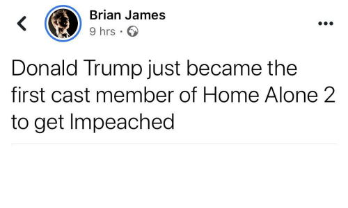 donald: Brian James  9 hrs · O  Donald Trump just became the  first cast member of Home Alone 2  to get Impeached