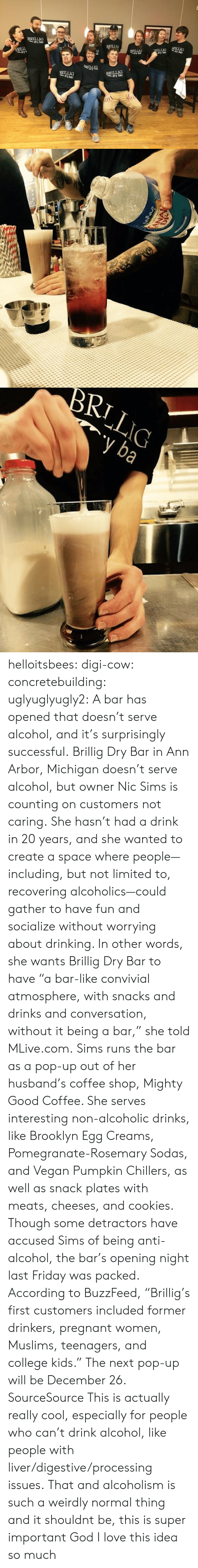 "College, Cookies, and Drinking: BRILLIG  BRIL  ARI LLIO  ar  dry bar  RILLIG  BRILLIG  dry bar   RILIC helloitsbees:  digi-cow:  concretebuilding:   uglyuglyugly2:   A bar has opened that doesn't serve alcohol, and it's surprisingly successful. Brillig Dry Bar in Ann Arbor, Michigan doesn't serve alcohol, but owner Nic Sims is counting on customers not caring. She hasn't had a drink in 20 years, and she wanted to create a space where people—including, but not limited to, recovering alcoholics—could gather to have fun and socialize without worrying about drinking. In other words, she wants Brillig Dry Bar to have ""a bar-like convivial atmosphere, with snacks and drinks and conversation, without it being a bar,"" she told MLive.com. Sims runs the bar as a pop-up out of her husband's coffee shop, Mighty Good Coffee. She serves interesting non-alcoholic drinks, like Brooklyn Egg Creams, Pomegranate-Rosemary Sodas, and Vegan Pumpkin Chillers, as well as snack plates with meats, cheeses, and cookies. Though some detractors have accused Sims of being anti-alcohol, the bar's opening night last Friday was packed. According to BuzzFeed, ""Brillig's first customers included former drinkers, pregnant women, Muslims, teenagers, and college kids."" The next pop-up will be December 26.  SourceSource  This is actually really cool, especially for people who can't drink alcohol, like people with liver/digestive/processing issues.   That and alcoholism is such a weirdly normal thing and it shouldnt be, this is super important   God I love this idea so much"