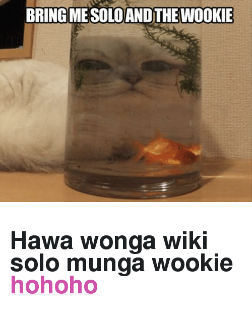 "Http, Wiki, and Solo: BRINGMESOLOAND THE WOOKIE <h2>Hawa wonga wiki solo munga wookie <a href=""http://welele.es/post/49539667792"">hohoho</a></h2>"