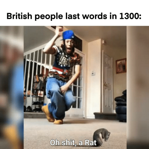 words: British people last words in 1300:  Oh shit, a Rat