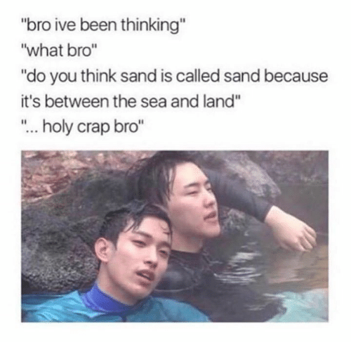 "craps: ""bro ive been thinking""  ""what bro""  ""do you think sand is called sand because  it's between the sea and land""  ""... holy crap bro"""