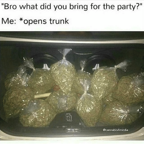"""Trunking: """"Bro what did you bring for the party?""""  Me: *opens trunk  @cannabis4media"""