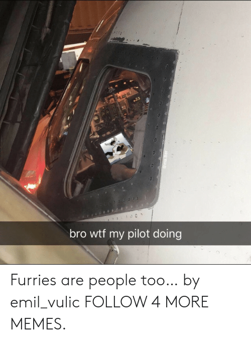 Emil: bro wtf my pilot doing  @ma.tter Furries are people too… by emil_vulic FOLLOW 4 MORE MEMES.