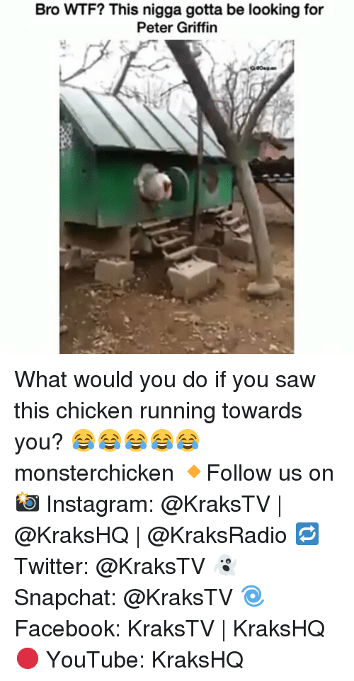 Peter Griffins: Bro WTF? This nigga gotta be looking for  Peter Griffin What would you do if you saw this chicken running towards you? 😂😂😂😂😂 monsterchicken 🔸Follow us on 📸 Instagram: @KraksTV | @KraksHQ | @KraksRadio 🔁 Twitter: @KraksTV 👻 Snapchat: @KraksTV 🌀Facebook: KraksTV | KraksHQ 🔴 YouTube: KraksHQ