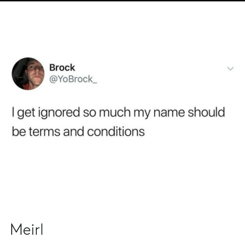 Brock: Brock  @YoBrock  get ignored so much my name should  be terms and conditions Meirl