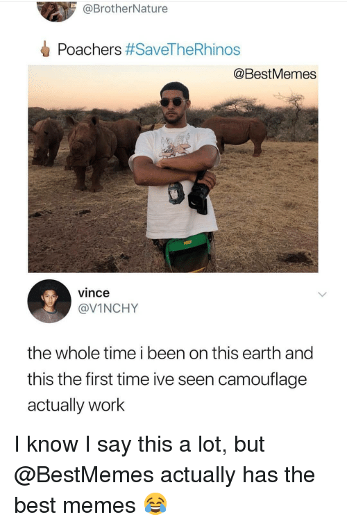 Memes, Work, and Best: @BrotherNature  Poachers #SaveTheRhinos  @BestMemes  vince  @VINCHY  the whole time i been on this earth and  this the first time ive seen camouflage  actually work I know I say this a lot, but @BestMemes actually has the best memes 😂