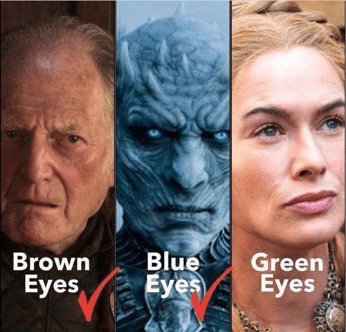 Game of Thrones, Eyes, and  Brown: Brown BluGreen  Eyes  Eyes