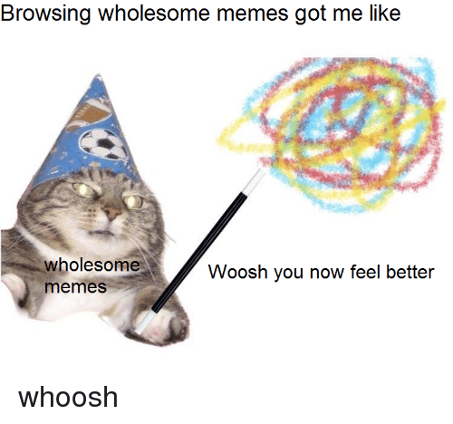 Memes Wholesome And Got Browsing Me Like Woosh