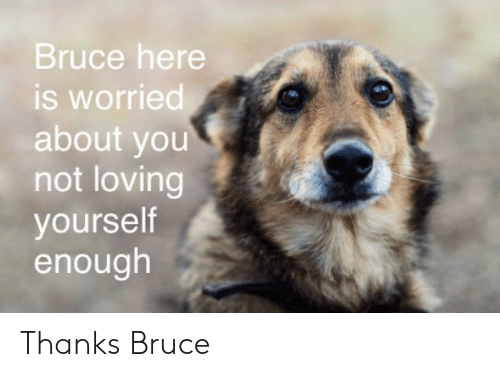 You, Thanks, and Enough: Bruce here  is worried  about you  not loving  yourself  enough Thanks Bruce