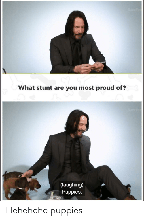 stunt: Bu Fee  What stunt are you most proud of?  Fee  (laughing)  Puppies. Hehehehe puppies
