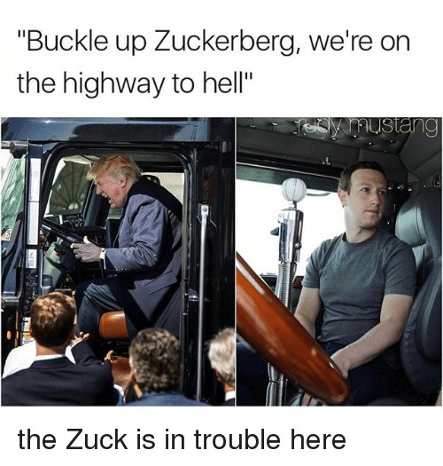 "Memes, Buckle, and Hell: ""Buckle up Zuckerberg, we're on  the highway to hell"" the Zuck is in trouble here"